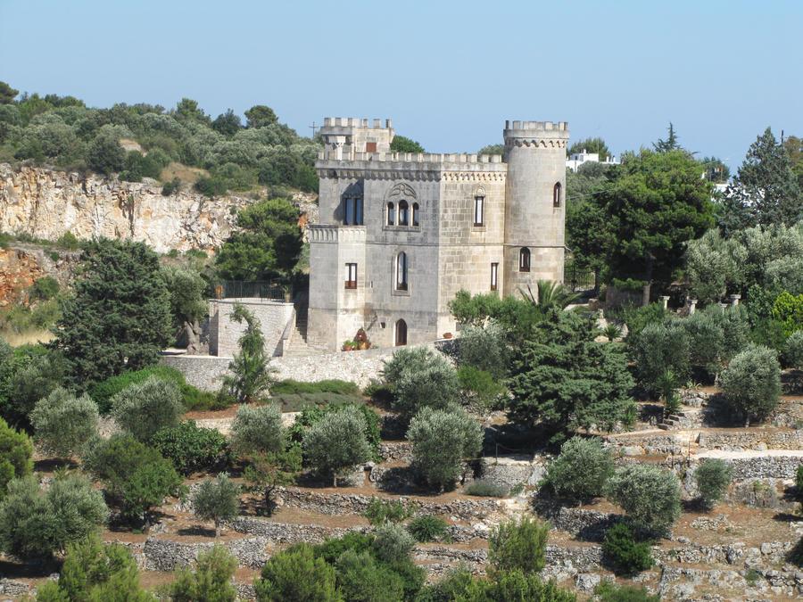 Modern Medieval Castle Floor Plans House Design And