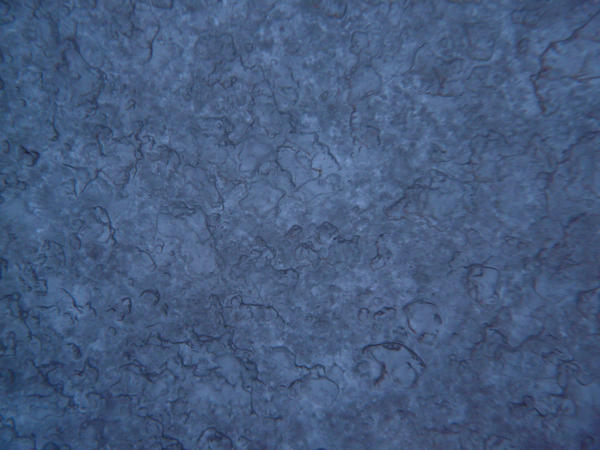 Frost texture 4 by YsaeddaStock on DeviantArt