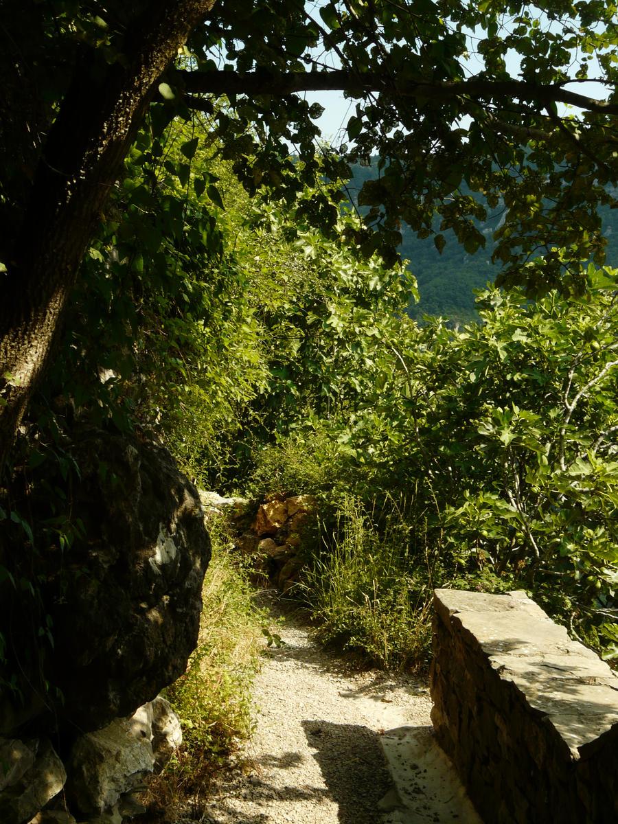 Path 4 by YsaeddaStock