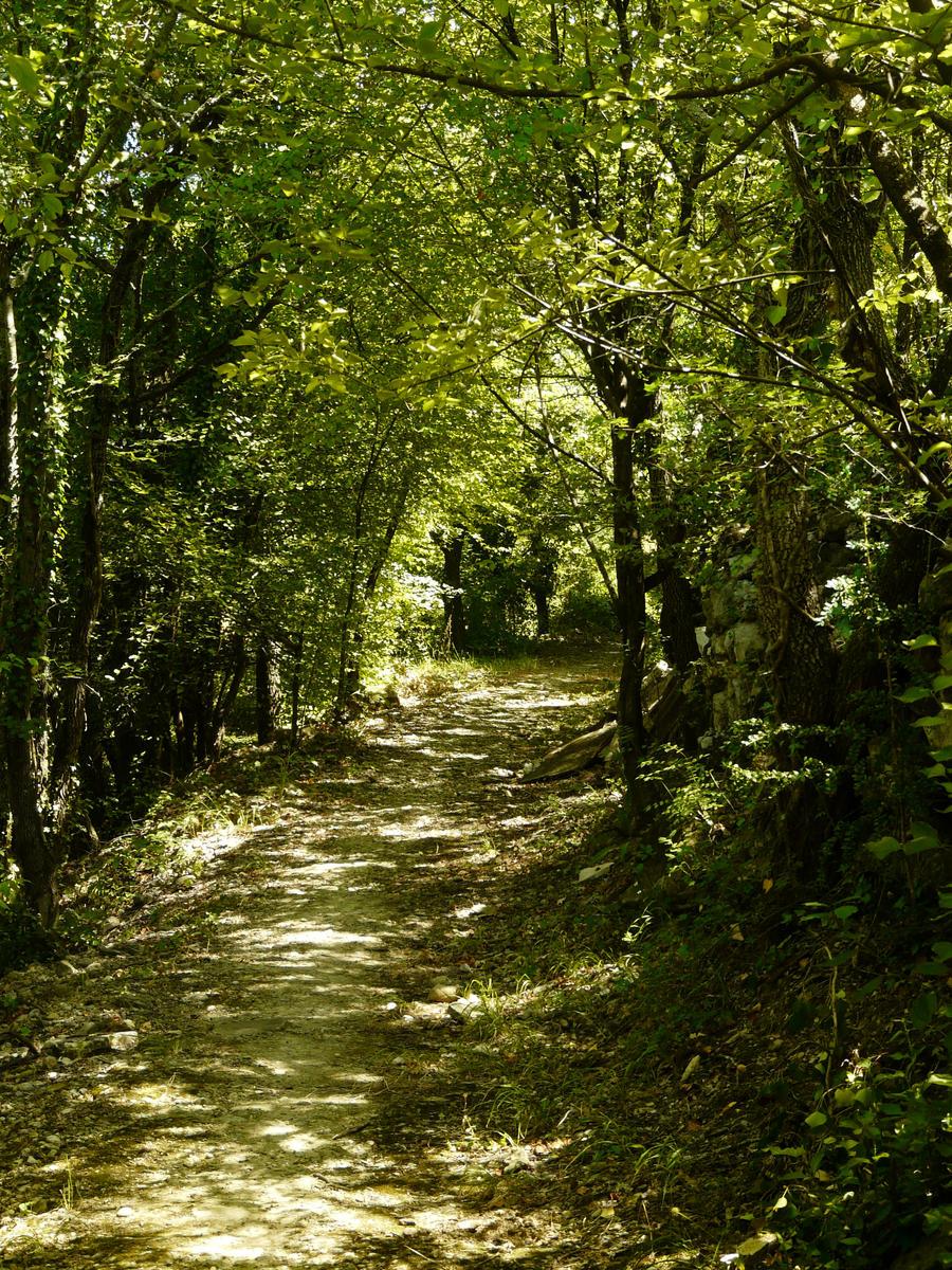 Path 23 by YsaeddaStock