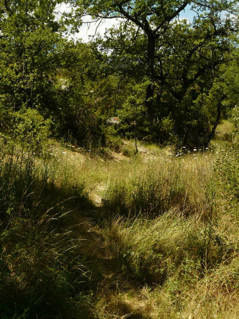 Path 24 by YsaeddaStock
