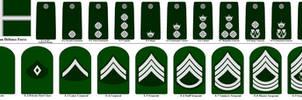 Valean Defence Force