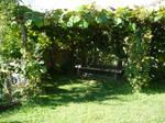 Garden 5 - medieval