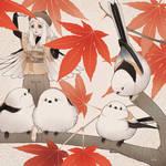 aegithalos caudatus japonicus