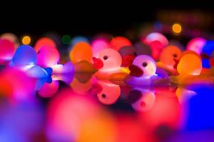 Colour Ducks by vintaz