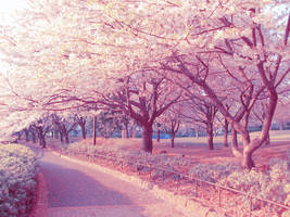 Pink Nature by vintaz
