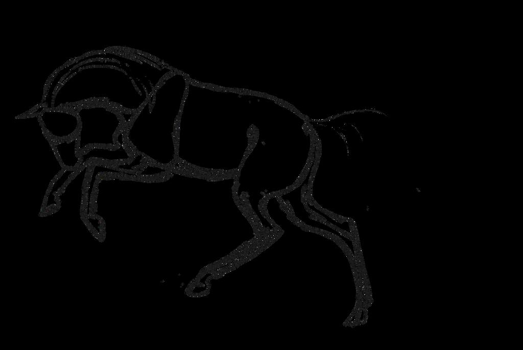bucking sketch by khlassicjazz
