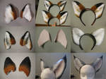 Ear Commission Examples