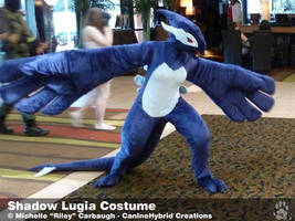 Shadow Lugia Costume -2010