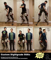 Custom Digitigrade Stilts by CanineHybrid