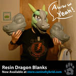 Resin Dragon Blanks: For sale!