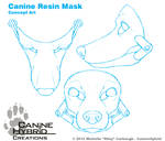 Canine Resin Mask: Concept