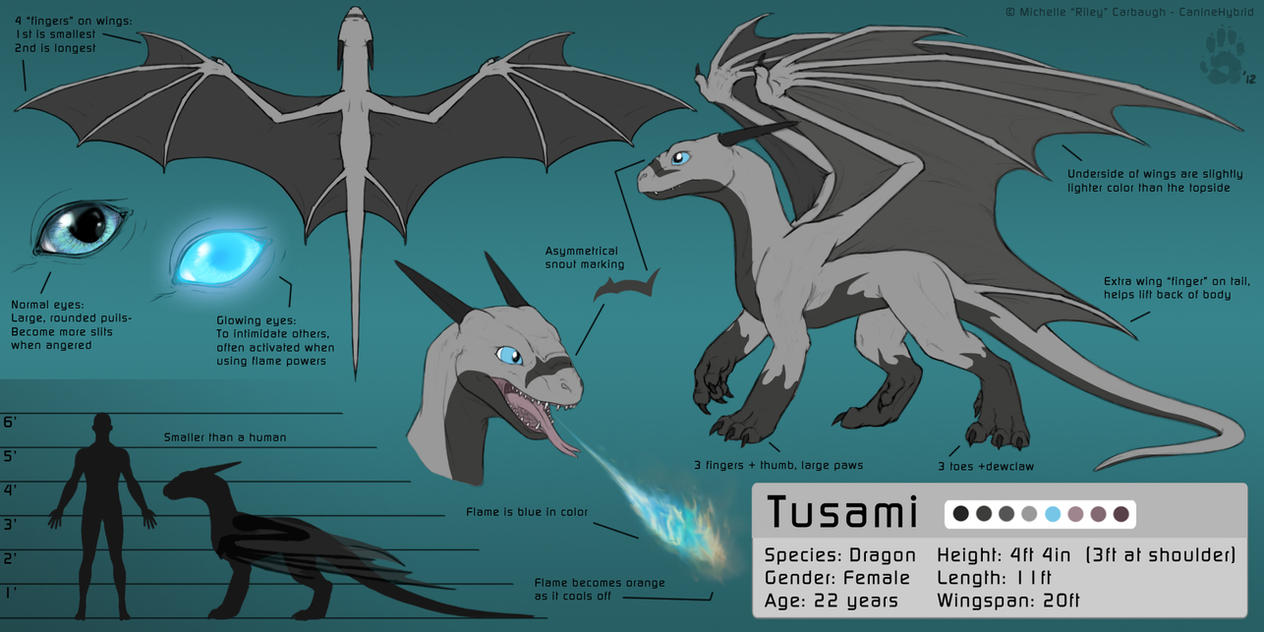 Tusami the Dragon- Reference Sheet by CanineHybrid