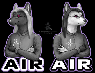Air Reversable Badge by CanineHybrid