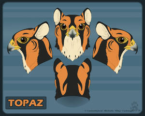 Topaz Realistic Head Reference