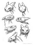 Toothless Sketches 2