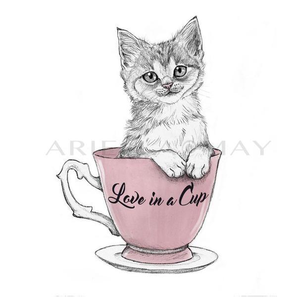 Kitten by AriellaMay
