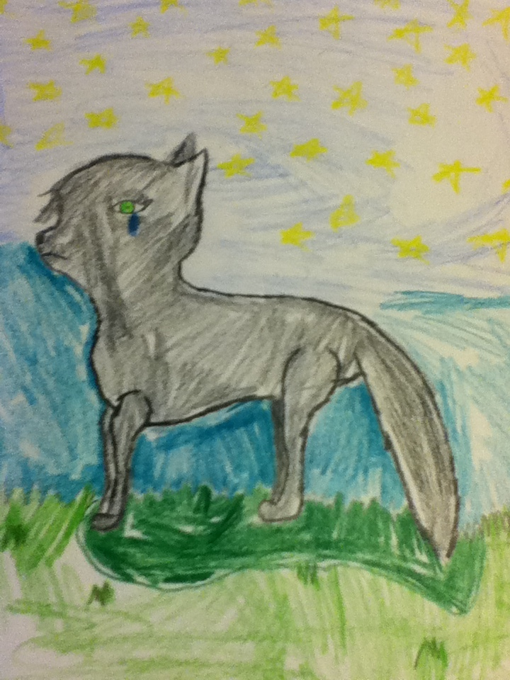 Dark wolf by xlightbluesnowflakex