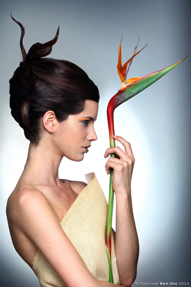 【Paradisebirds model】 casey