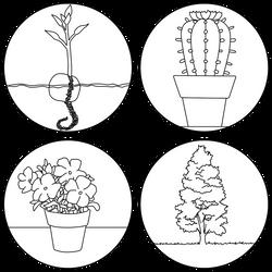[Plasta tu arte] Plantas