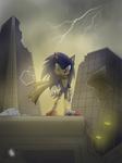 [Sonic Boom] Desolation in the city
