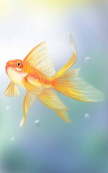 Gold Fish Card for my new game by vectoreyes