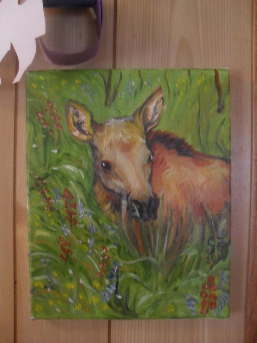 baby moose by templeofapollon