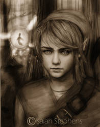 Link. by IsaiahStephens