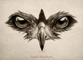 Hawk Eye by IsaiahStephens