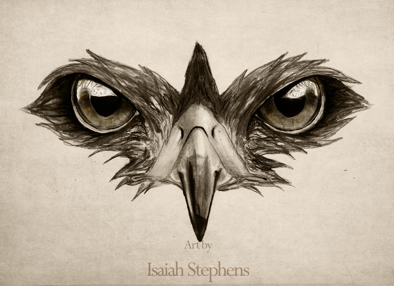 Hawk Eye By IsaiahStephens On DeviantArt