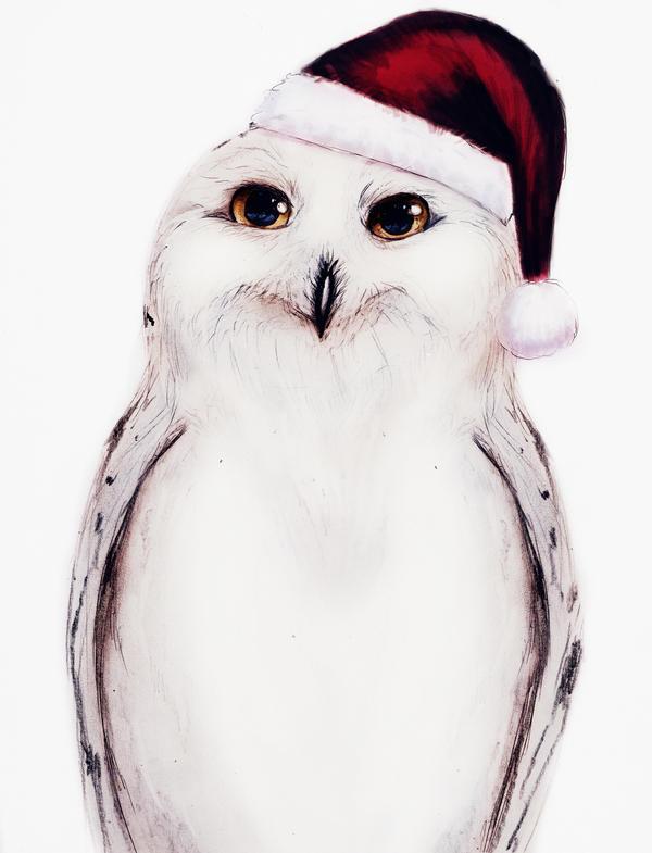 Pour ou contre la neige sur ZC - Page 2 Snowey_christmas_owl_by_isaiahstephens-d6zcmws