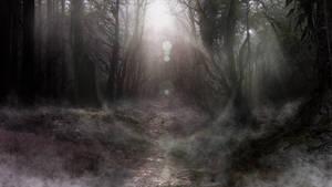 Dark Forrest matte 2