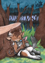 A nap in the forest by Chocolatechilla
