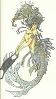 Mermaids Purse by zirofax