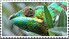Chameleon stamp by SatoshiMist
