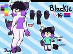 Blackie REF SHEET 2017-2018