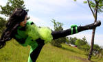 Don't Mess With Shego - Cosplay