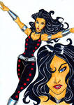 Teen Titans A-Z : Donna Troy