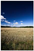 Field by petemc