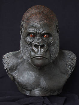 Lowland Gorilla: front view by revenant-99