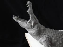 Nile Crocodile sculpt- head close-up