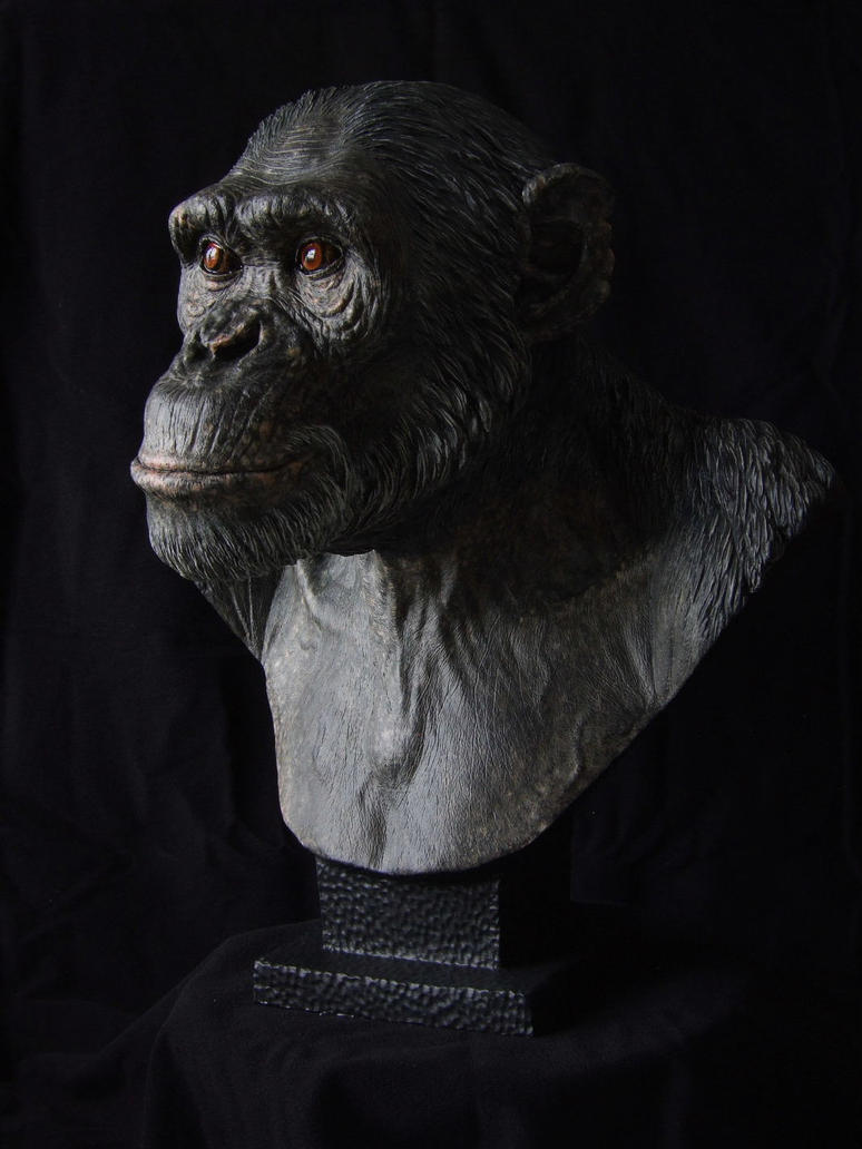 Chimpanzee sculpt - Painted cast, another angle by revenant-99