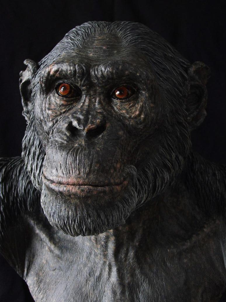 Chimpanzee sculpt - close up by revenant-99