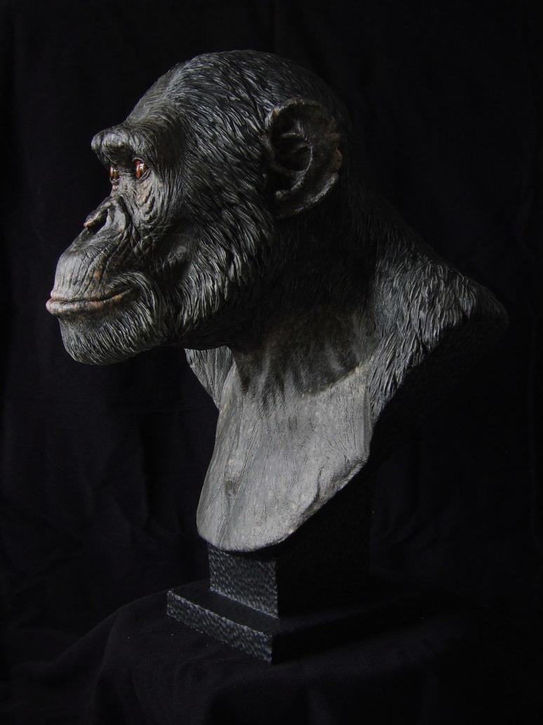 Chimpanzee sculpt - painted cast, profile by revenant-99