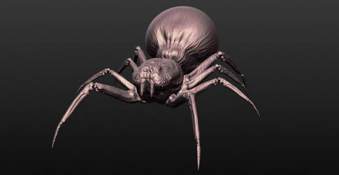 Spider - digital sculpt, front view