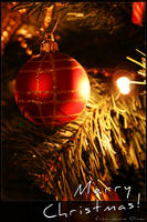 Merry Christmas 1 by jamieoliver22