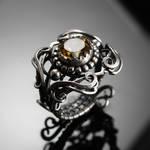 Cilia ring 1