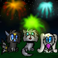 Fireworks *contest entry* by SnoodleMuffins