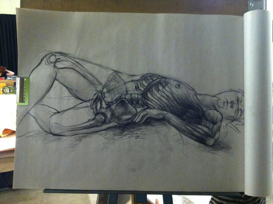 Anatomy of drawing
