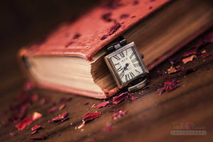It's Time For a New Story by xChristina27x